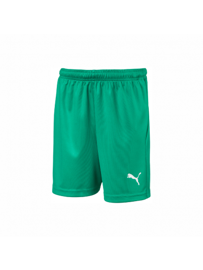 FCP Unisex Liga Short Core Green
