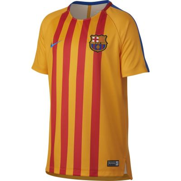 Nike Kids' Dry FC Barcelona Squad Top