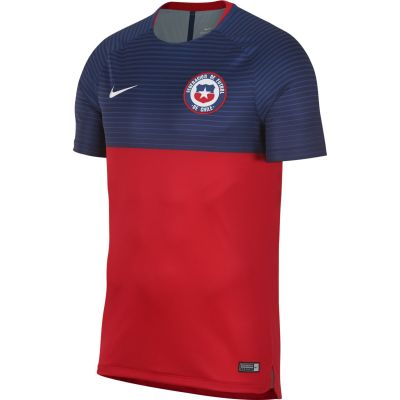Nike Men's Dry Chile Squad Football Top