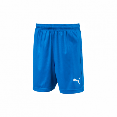 FCP Boys/Men Liga Short Blue