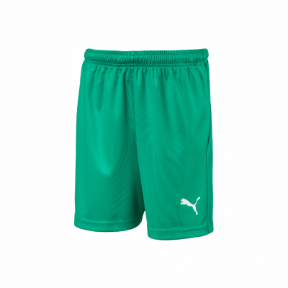 FCP Unisex Liga Short Core Green